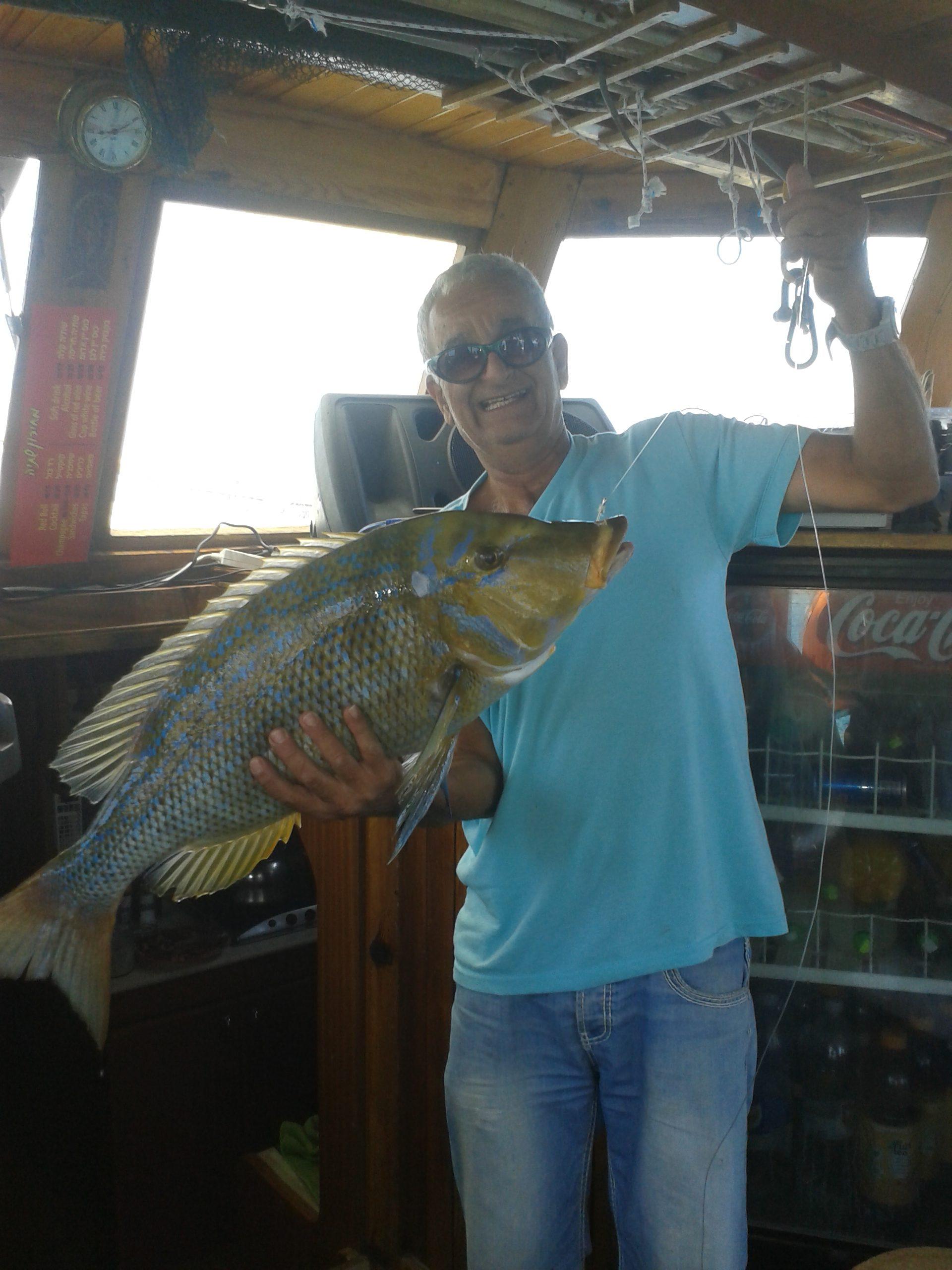 לדוג מיאכטה
